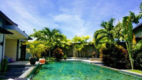 Swimming Pool - Seminyak Villa Rental - Villa Koru
